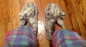 Toasty Bearpaw slippers and happy pajama pants always make winter slightly tolerable..