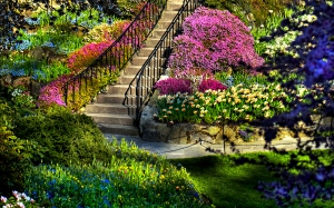 wonderwordz_gardens_2